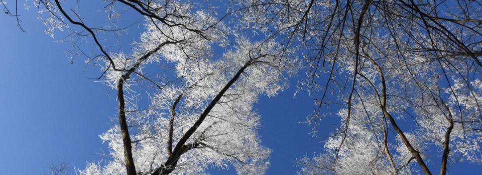 Winter VoralpenEi